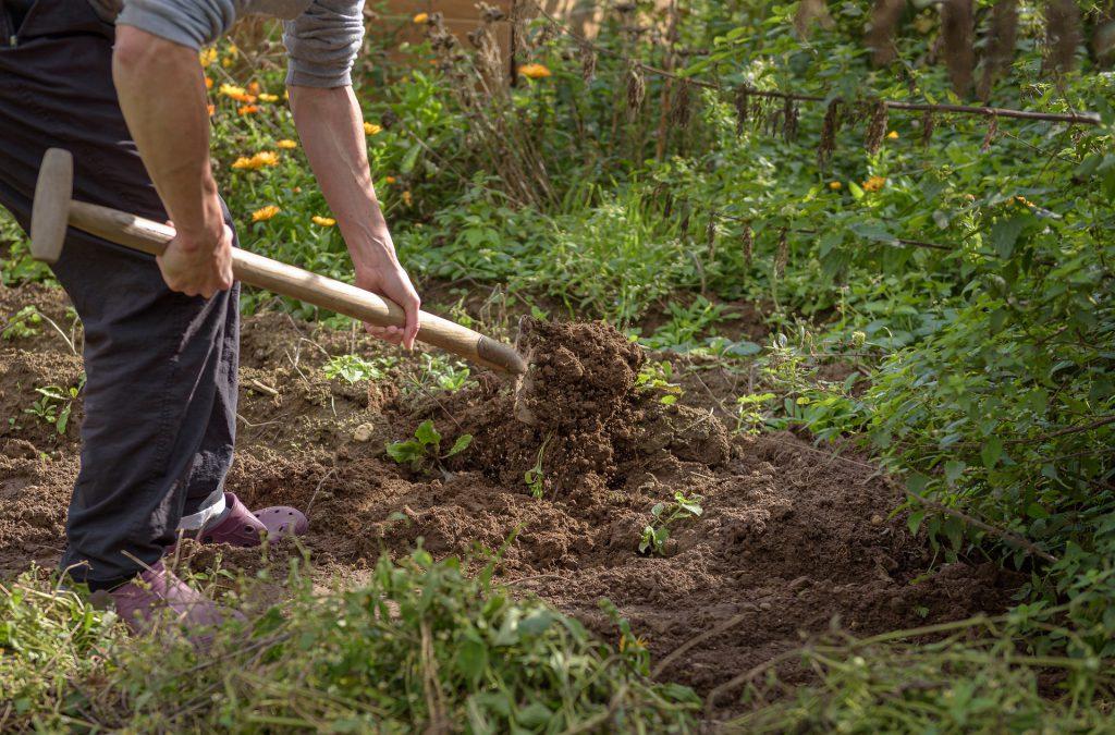 Agriculteur en train de retourner la terre avec une fourche